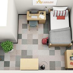 icon-Adelphi-University-Single-3D